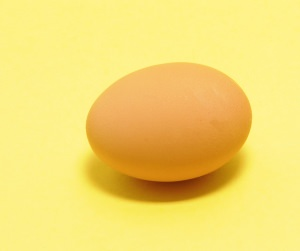 egg protein treatment for hair