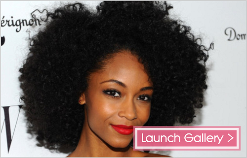 launch gallery - 12 Celebrities Rocking Their 4a And 4b Tresses
