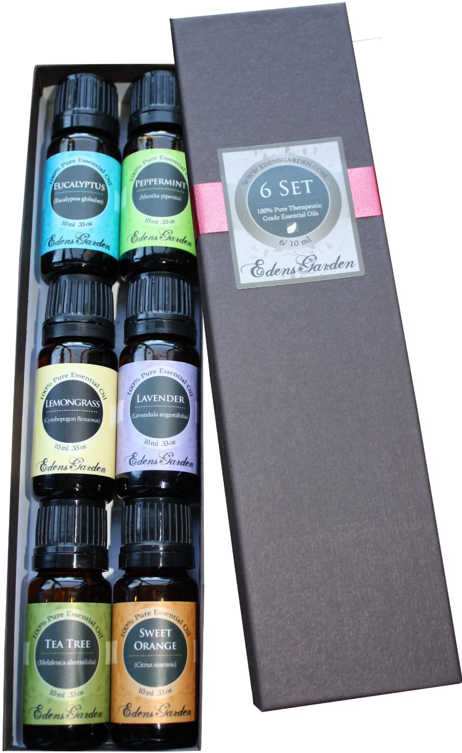 Top 6 100% Pure Therapeutic Grade Basic Sampler Essential Oil Gift Set