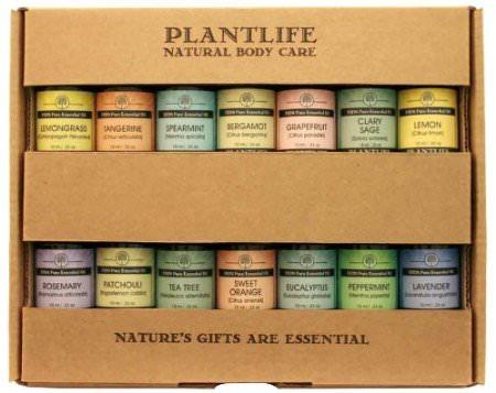 Best Set 14 Essential Oils