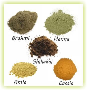 Various ayurvedic powders - Brahmi Henna Shikakai Amla Cassia