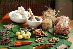 How To Add Ayurvedic Hair Care Elements Into Your Regimen