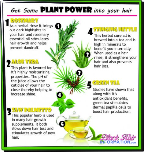 PCT - Get Some PLANT POWER into your hair
