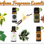 My Top 6 Perfume Fragrance Essential Oils