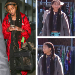 Willow Smith Rocks Faux Locs