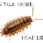 Your Children Are Back In School, So let's Talk About Lice