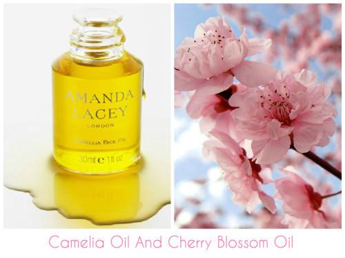 BHI - Cherry Blossom Oi