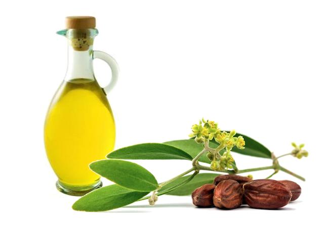 Oils Good For Natural Black Hair