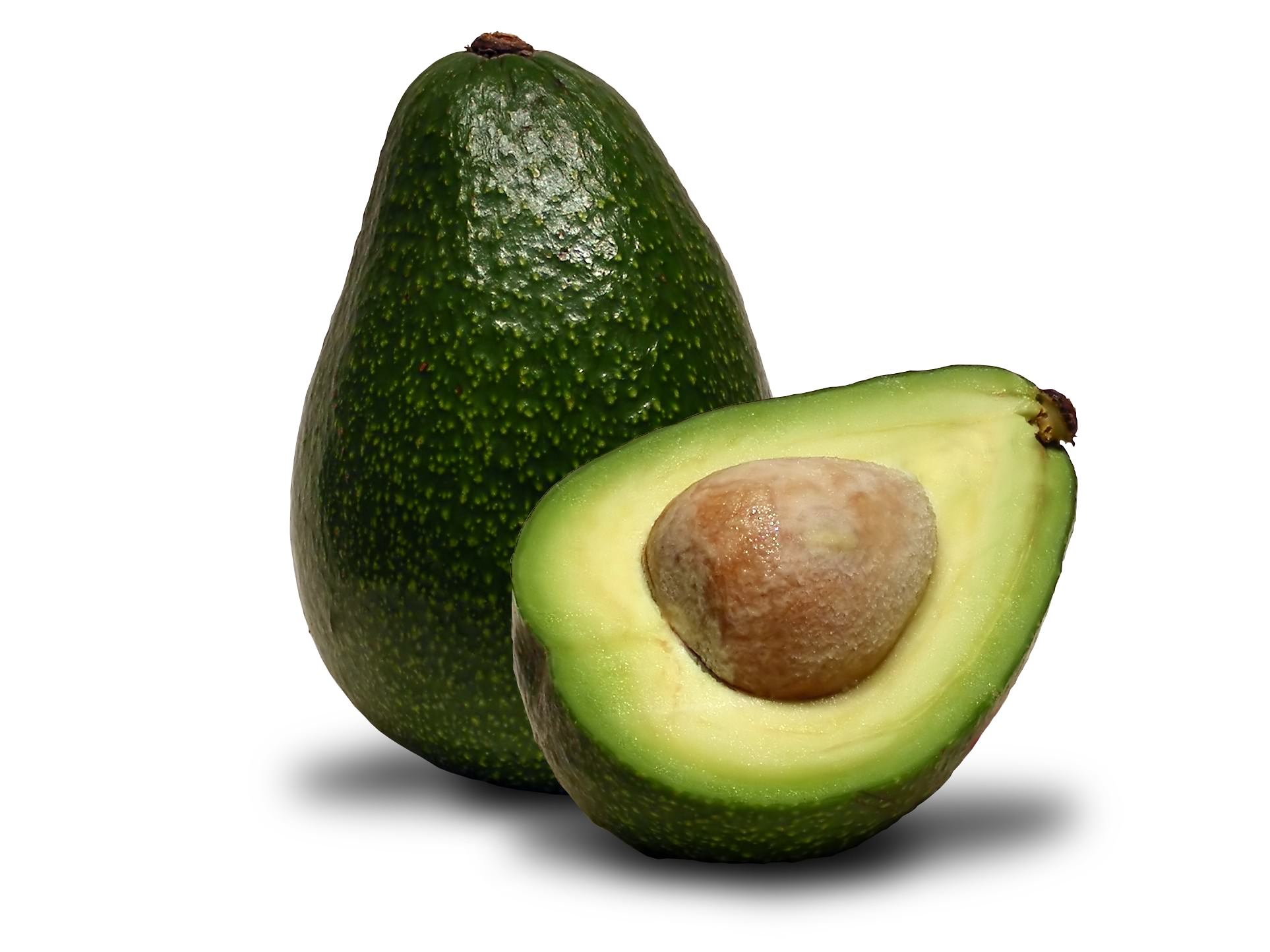 avocado21