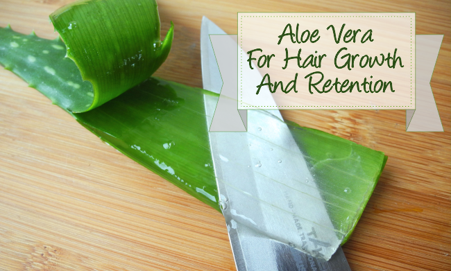 The Aloe Vera Plant For Hair Growth And Retention