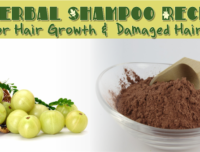 3 Herbal Shampoo Recipes For Hair Growth And Damaged Hair
