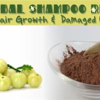 3 Herbal Shampoo Recipes For Hair Growth & Damaged Hair