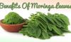 Benefits Of Moringa Leaves