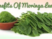 Promote Hair Growth and Beautiful Skin by Adding Moringa to Your Beauty Regimen