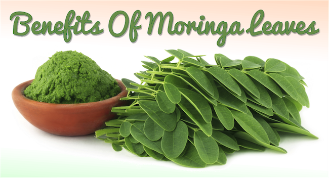 Benefits Of Moringa Leaves
