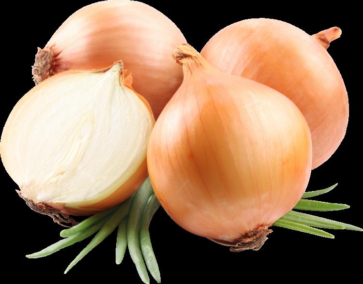 onion_PNG605-750x587