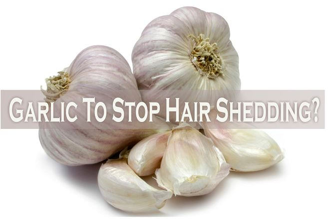 garlic to stop shedding