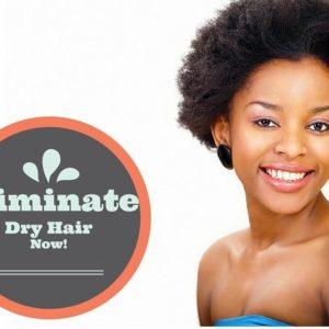 eliminate dry hair