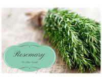 Rosemary Is Great For Hair Growth Here Are 5 Ways To Use It!