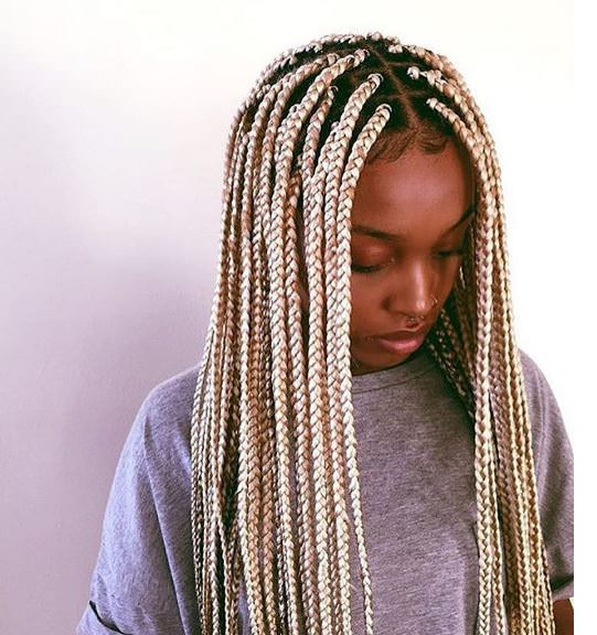 Crochet Box Braids Pre Braided Hair : box braids