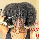 BIG CHOP 2016 On My HEAT DAMAGED HAIR [Video]