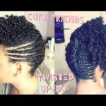 Funky Up-Do on Natural Hair [Video]