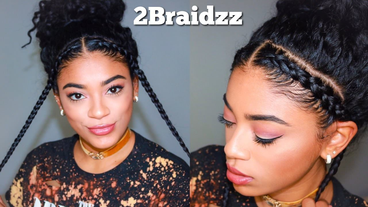 Two Braid Hairstyles Natural Curly Hair Video Black