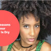 10 ReasonsYour Hair Is Dry