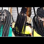 @Braids_by_Twosisters #Inspired Spider Web Braids [Video]
