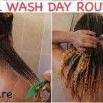 Fall Natural Hair Wash Day Routine for Length Retention + Moisture (Start to Finish) [Video]