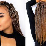 No Cornrows Crochet Braids Style – Senegalese Twists [Video]